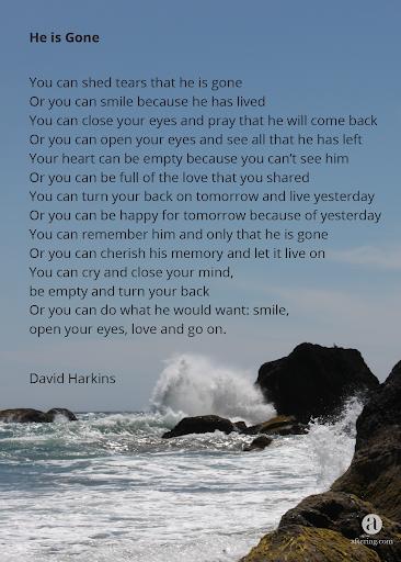 David Harkins - He Is Gone